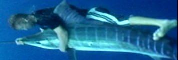 Der verrückteste Angler der Welt - Matt Watson - Stuntfischer - Extremfischen