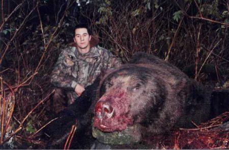 Grizzly - Riesen Bär - Größter Bär der Welt