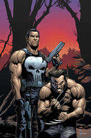 Comic Wolverine-Punisher